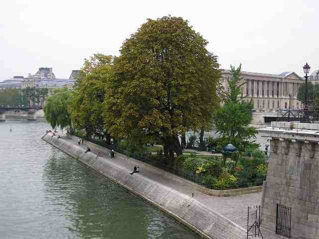 looking at paris from the square du vert galant abc paris cheap flights budget hotels. Black Bedroom Furniture Sets. Home Design Ideas
